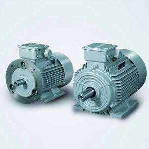 1LG0 Series motors