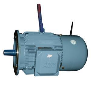 MQAE motors