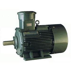 YB2 motors